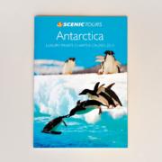 antarctica-print